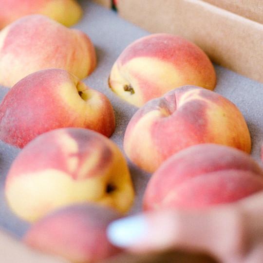 The Peach Truck.